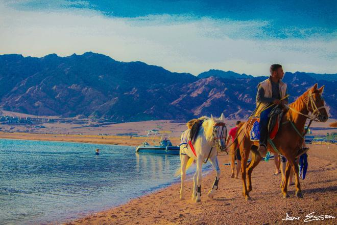 أفضل 4 دول عربية للسياحة أنصحك بزيارتها