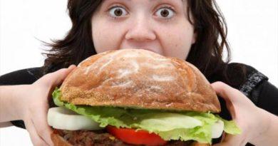 تعددت النصائح والمهم الاستمتاع كم مرة يجب أن نأكل في اليوم ؟